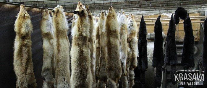 Выделка меха в Перми